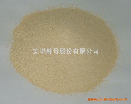 培养基专用酵母粉