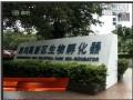 生物产业:深圳未来经济的发展引擎