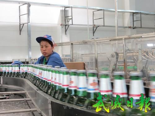 武威青岛啤酒60万千升啤酒生产线技改扩建项目进入试生产期