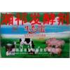 湘祁厂家直销生态宝微生物饲料发酵剂原种玉米秸秆青贮饲料发酵剂