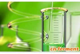 香精与香料的白色生物技术市场分析