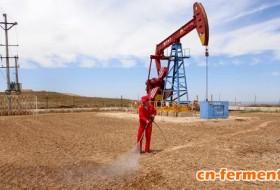 中俄合作研究微生物采油技术 低耗高效且环保