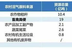 中国生物天然气行业的现状、问题与前景分析