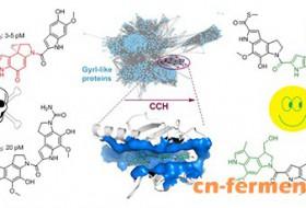 上海有机所在高活性天然产物生物合成中发现新的自抗性机制