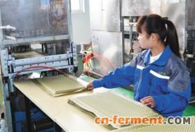 河南南乐县兴起玉米绿色新产业