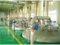 出租东北大型乳酸工厂