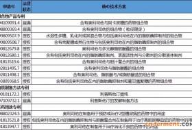 奥利司他中国专利布局策略分析