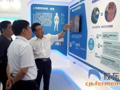 东海药业:小小微生物保障国人大健康