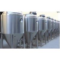 猕猴桃果酒发酵罐 成套葡萄酒生产线 小型果汁全自动果酒生产线