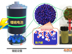 浙大学者新发明:酿酒的霉菌能做电池 续航能力强