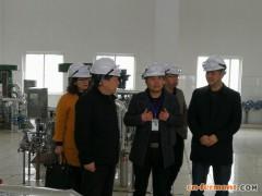 东阳市领导调研普洛药业等工业企业重点项目