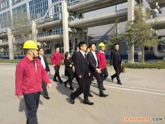 台湾企业到寿光市洽谈合作木糖和氨基酸发酵项目