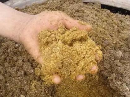 发酵饲料的现状及发展前景