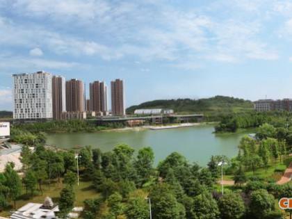 武汉与台湾生物产业合作的现状和趋势分析