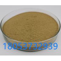 米曲霉米曲霉孢子粉饲料添加剂
