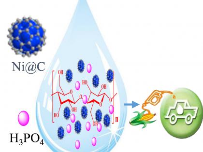 广州能源所在纤维素乙醇化学催化制备方面取得进展