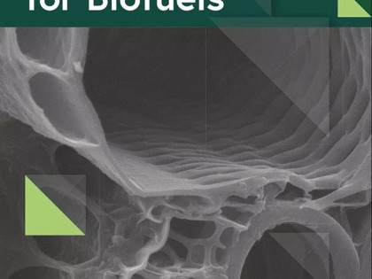 生物能源领域期刊推介   Biotechnology for Biofuels