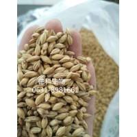 威海厂家优质家酿自酿精酿大麦芽淡色艾尔麦芽拉格啤酒原料澳麦