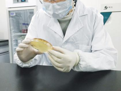 绍兴同创越诚健康专注人体微生态调理,成功开发多种益生菌产品