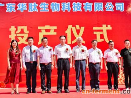 广东华肽年产2000吨功能性肽科研成果转化项目在肇庆正式投产