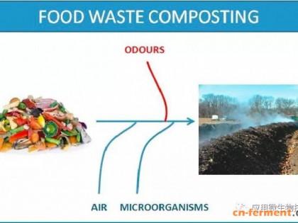 食物垃圾(Food Waste,FW)微生物堆肥技术:现状和挑战