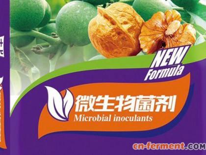 专家教大家重新认识,市场上的微生物菌剂