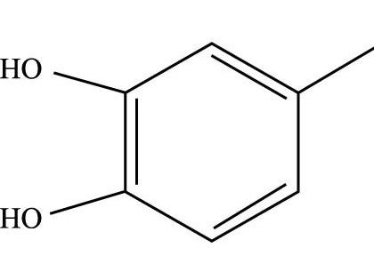 羟基酪醇的生物学活性及其代谢特征
