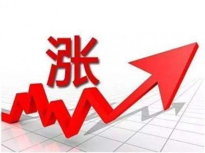 主要维生素产品涨价超50% 国内龙头厂商业绩有望持续增长