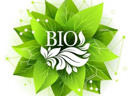 """中国公布""""绿色生物制造""""重点专项6大任务22个研究方向"""