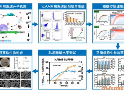陈坚院士团队刘延峰研究员课题组在Nature Communications发表关于细胞生长与产物合成平衡调控的研究成果