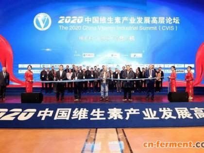 中国维生素产业发展 高层论坛13日在花园村召开