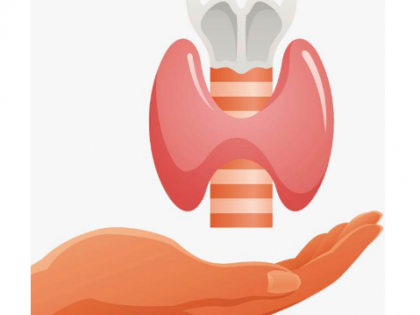 了解HMB、氨糖软骨素的功效与作用,关注骨骼关节健康