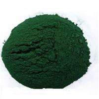 求购海水螺旋藻藻种