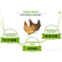 求购蛋鸡专用益生菌