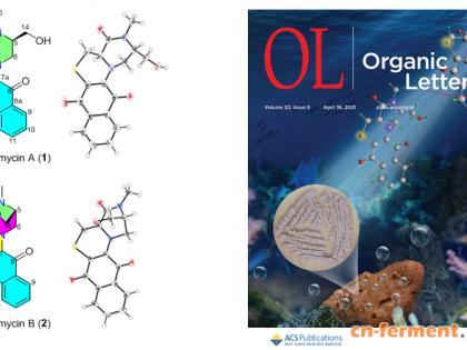 南海海洋研究所发现两个具有抑菌和抗肿瘤生物活性的新颖硫代稠环生物碱类化合物dassonmycins