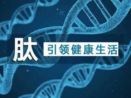 中国食品报:功能肽开发应用前景广阔