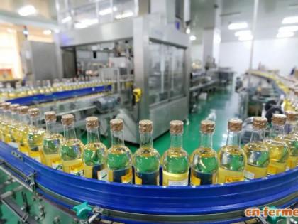 西王首次在玉米油行业应用酶法脱胶新技术,每年可增加2000万经济效益