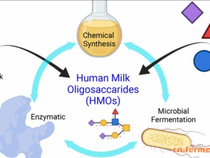 母乳中重要成分人乳寡糖HMO的全化学合成,人造乳研究再进一步!